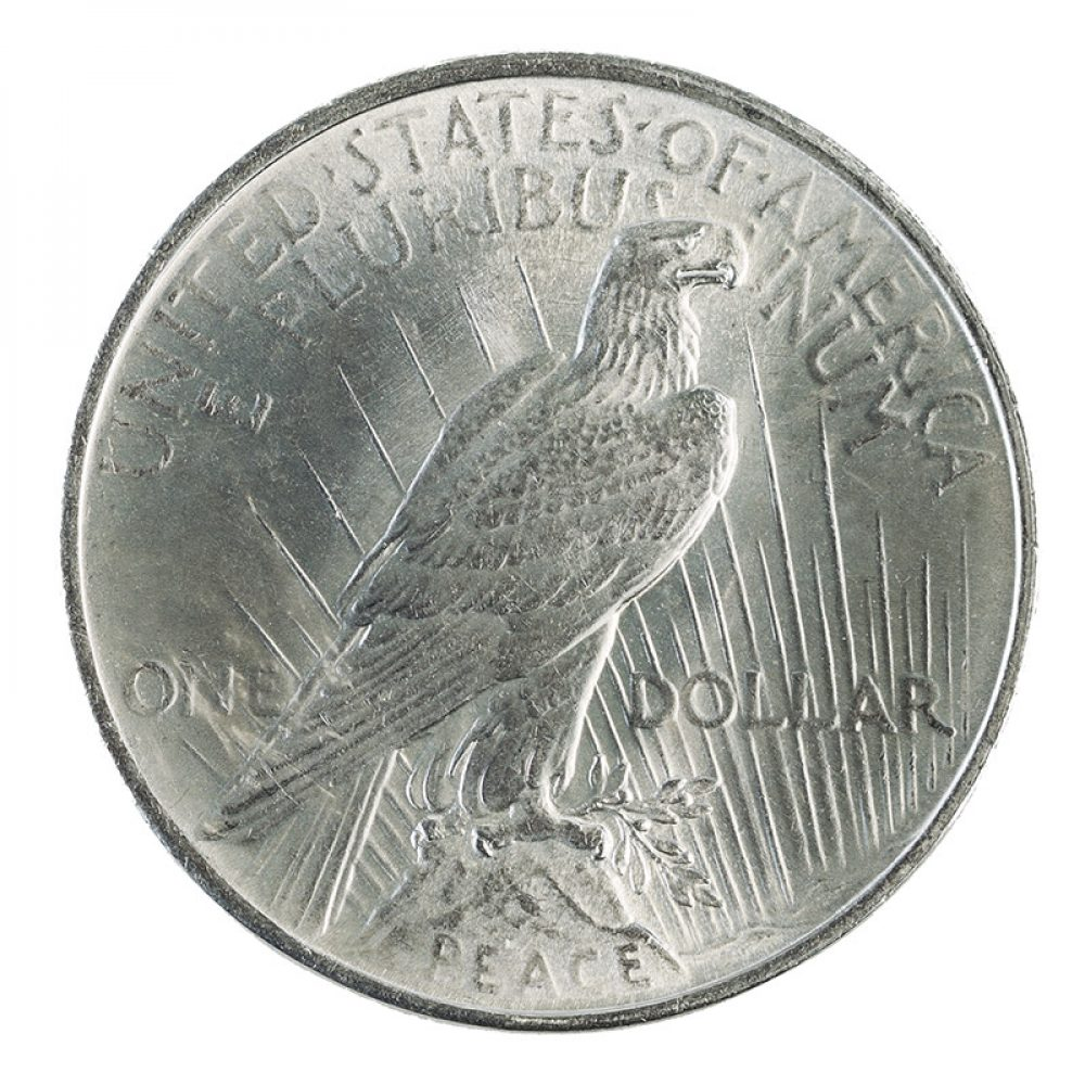 silver coin investment advice from McAlvany ICA